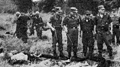 美军首次在越南作战